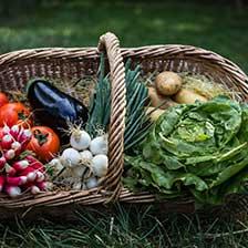Fruits et légumes locaux - La Ferme de Marie-Jeanne à Andel